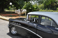 Trasporto alternativo in Cuba Immagini Stock Libere da Diritti
