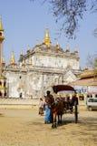 Trasporto in Bagan, Myanmar Immagine Stock Libera da Diritti