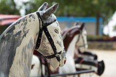 Trasporto capo antico di legno del cavallo, Avignone Immagine Stock