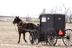 Trasporto dei Amish Fotografia Stock