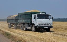 Trasporto del campo di grano Fotografia Stock Libera da Diritti