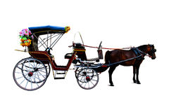 Trasporto del cavallo Immagini Stock