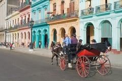 Trasporto del cavallo a Avana centrale, Cuba Fotografia Stock