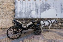 Trasporto del cavallo a Jerez de la Frontera, Spagna Fotografie Stock