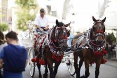 Trasporto del cavallo nel mercato principale a Cracovia Fotografia Stock Libera da Diritti
