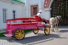 Trasporto del cavallo nel parco di Kolomenskoye Fotografie Stock Libere da Diritti