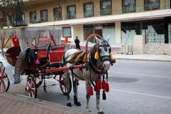 Trasporto del cavallo per i turisti Immagine Stock Libera da Diritti