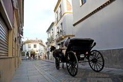 Trasporto del cavallo in una via di Cordova, Spagna Fotografia Stock