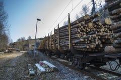 Trasporto del legname Immagine Stock