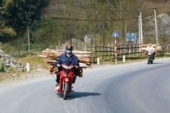 Trasporto del legno Fotografie Stock