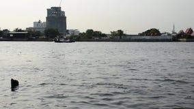 Trasporto della barca in Chao Phraya River archivi video