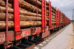 Trasporto della biomassa Fotografia Stock Libera da Diritti