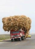 Trasporto della canna da zucchero Fotografie Stock