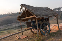 Trasporto della mucca e riparo, Madagascar Fotografia Stock Libera da Diritti