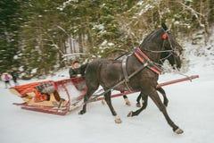 Trasporto della slitta del cavallo Fotografie Stock