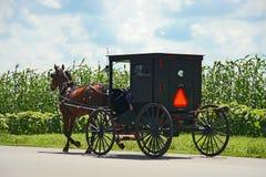 Trasporto di Amish Immagine Stock