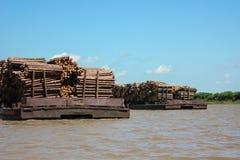 Trasporto di legname lungo il fiume immagine stock