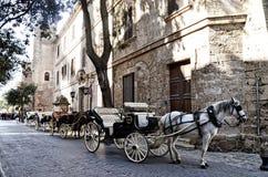 Trasporto e cavallo in Palma de Mallorca Immagine Stock