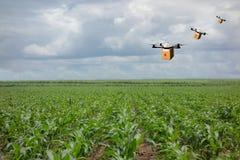 Trasporto nel concetto di agricoltura, agricoltore astuto di volo del fuco Fotografie Stock Libere da Diritti