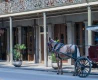 Trasporto-nuovo quartiere francese trainato da cavalli di Orleans fotografia stock libera da diritti