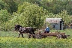 Trasporto rurale Fotografie Stock