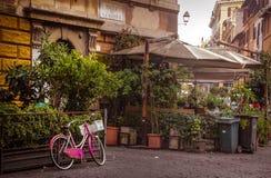 Trastevere стоковые фотографии rf
