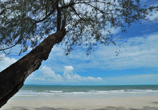 Trat sea Stock Image