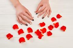 Tratamento de mãos à moda e pétalas cor-de-rosa vermelhas Fotos de Stock