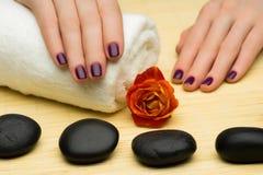Tratamento de mãos bonito Imagens de Stock Royalty Free