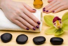 Tratamento de mãos bonito Imagem de Stock