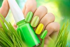 Tratamento de mãos da mola Pregos frescos do verde da natureza fotografia de stock royalty free