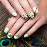 Tratamento de mãos do projeto da arte com a pena do pavão nas mãos fêmeas Close-up Pregos da forma imagem de stock