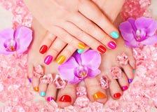 Tratamento de mãos e pedicure Imagem de Stock