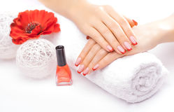 Tratamento de mãos francês com a flor vermelha da papoila Imagem de Stock