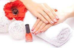 Tratamento de mãos francês com a flor vermelha da papoila Imagens de Stock