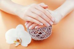 Tratamento de mãos francês de Ombre com a orquídea no fundo alaranjado A mulher com tratamento de mãos francês do ombre branco gu imagens de stock