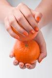 Tratamento de mãos frutado Fotos de Stock