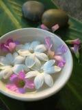 Tratamento do aroma do jasmim Fotografia de Stock Royalty Free