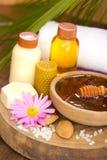 Tratamento do mel e dos termas Fotografia de Stock