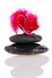Tratamento do zen Fotografia de Stock