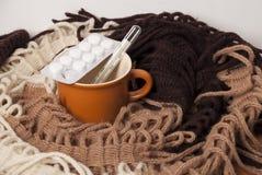 Tratamento frio em casa Imagens de Stock Royalty Free
