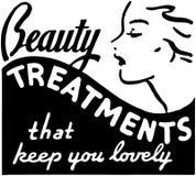 Tratamentos da beleza ilustração stock