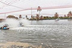 Tratamiento de aguas de las granjas del camarón Foto de archivo libre de regalías