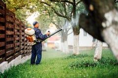 Tratamiento de rociadura del pesticida del trabajador de granja en jardín de la fruta imagen de archivo
