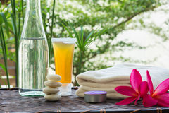 Tratamiento de Zen Spa Imagen de archivo