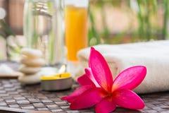 Tratamiento de Zen Spa Imagenes de archivo