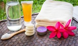 Tratamiento de Zen Spa Foto de archivo libre de regalías