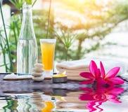 Tratamiento de Zen Spa con reflexiones del agua Imagen de archivo