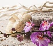 Tratamiento del balneario con la recuperación del zen Foto de archivo libre de regalías