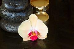 Tratamiento del balneario de la orquídea Fotografía de archivo